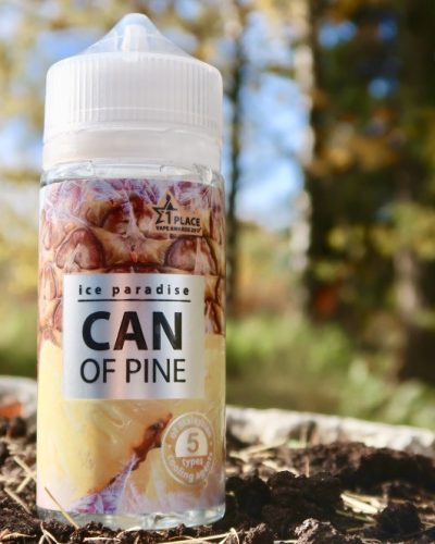 Вейп Челябинск Жидкость ice Paradise Can of Pine